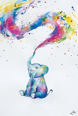 WATERCOLOUR BABY ELEPHANT MARC ALLANTE POSTER 61x91cm SPRING PRINT NEW ART