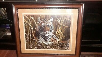 """""""TIGER"""""""""" picture  (((good condition )))) .....    BIG......"