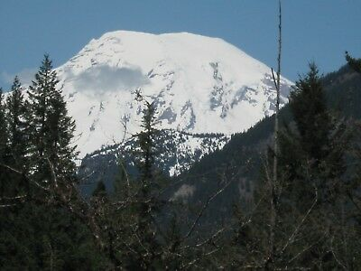 Beautiful Mt Rainier View Buildable 3.70 Acres in Packwood WA