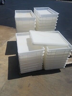 Used Pizza Dough Box, Lot of 15 with 1 lid