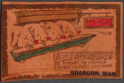 Novelty LEATHER Postcard - Pigs at the Trough, No Place Like Home - Brandon Man