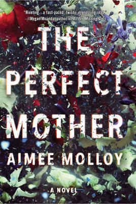 The Perfect Mother by Aimee Molloy (2018, eBooks)