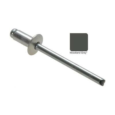 Qty 300 Dome Rivet 73 AS 4-3 WOODLAND GREY / SLATE GREY Colourbond 3.2mm, 1/8""