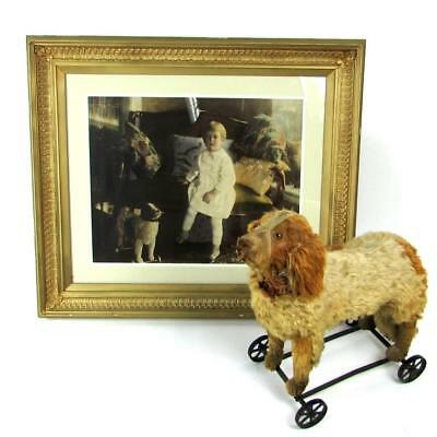 Antique Early 1900's Mohair Dog on Wheels Pull Toy w/ Original Photo - Steiff ?