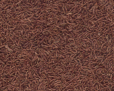 Chironomus mangime secco per pesci, guppy, discus 15g/150ml. Dried bloodworms