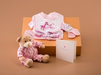 New Baby Girl Gift Box -5 Pce Clothing Set, Soft Toy And Greeting Card