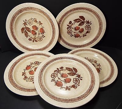Pottery British Home Stores (bhs) Imported From Abroad Bhs Country Vine Dinner Plate