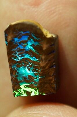 3.5 ct Gem Queensland Boulder Opal Rub *No Reserve Auction* - VIDEO