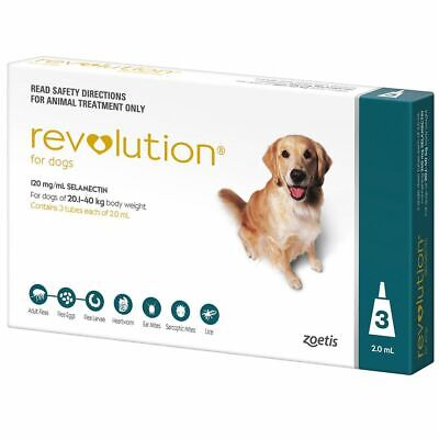 Revolution for Dogs 20.1-40 kg - Teal 3 Pack