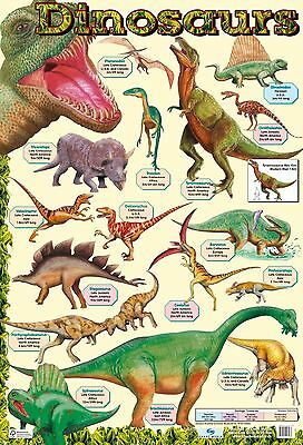 Dinosaur Poster and Earths History poster - A2 size - 2 charts  Educational