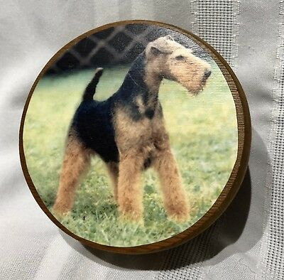 The Welsh Terrier Club Of America~Montgomery 2004~Trinket Box~Hand Turned Lidded
