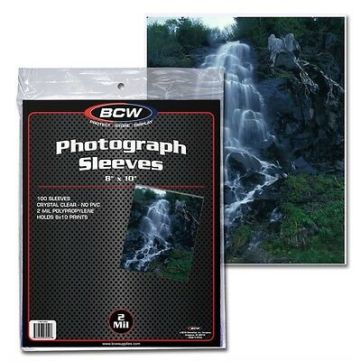 8 x 10 inch Photograph Protective Sleeve x 100 pack