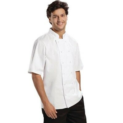 Short Sleeve White Chef Top Chef Jacket Double Breasted Plastic Buttons