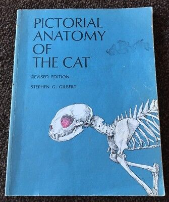 Pictorial Anatomy of the Cat Revised Edition Book by Stephen G Gilbert