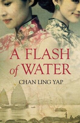 A Flash of Water (Paperback)