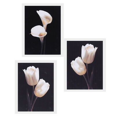 3pcs Large Canvas Modern Wall Decor Art Oil Painting Picture Print Unframed