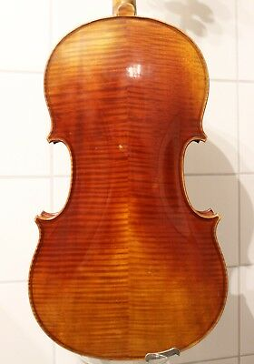 A Private Collection of Old String Instruments and Bows for SALE !!! 30% OFF !!!