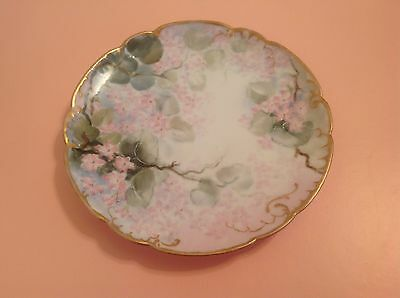 Antique Hand Painted H & Co Limoges France Plate 1888-1896 Very Good Condition