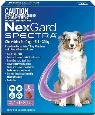 NexGard Spectra Chewables For Large Dogs 15.1-30kg - Purple 6 Pack