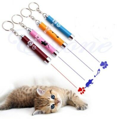 Cat Kitten Toy LED Laser Pointer Pen With Bright Mouse, Paw or Fish Picture
