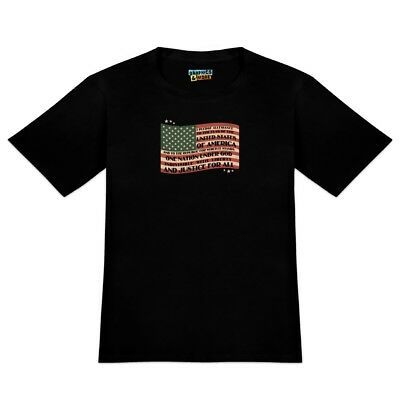 USA Vintage Flag Pledge of Allegiance Men's Novelty T-Shirt