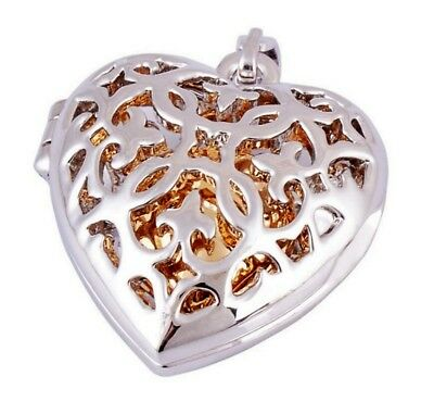 1x Pet Cremation Urn Heart Jewelry Necklace Dog Ashes Pendant Keepsake For Human
