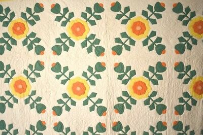 VIBRANT Vintage 30's Ohio Rose Applique Antique Quilt ~DENSE QUILTING!