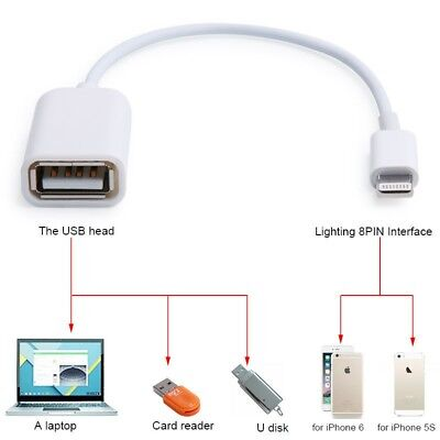 USB Female to 8 pin Male OTG Adapter Cable For Apple iPad Air iphone 5/S/C/6G
