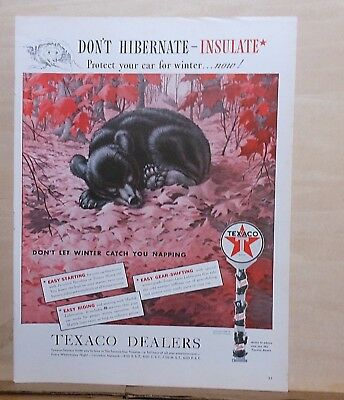1939 magazine ad for Texaco - Don't hibernate, bear beds down in autumn leaves