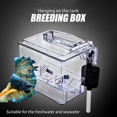 Fish Tank Breeding Hatchery Incubator Aquarium Breeder Isolation Hang Box Pump