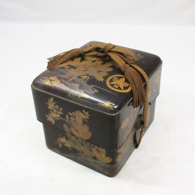 B892: Real old Japanese lacquered storage box with wonderful MAKIE in 1700's