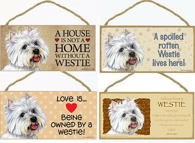 """Chihuahua Long Hair Dog Sign Plaque 10/""""x5/"""" House not Home Spoiled Love Advice"""