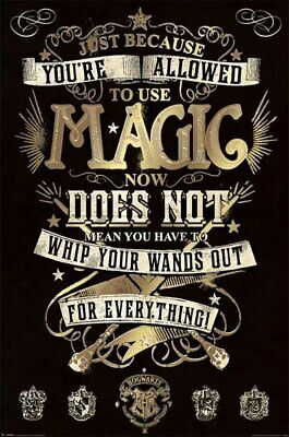 Harry Potter - Magic-Poster-Laminated available-91cm x 61cm-Brand New-PP33920