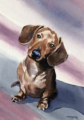 DACHSHUND Dog Watercolor Painting 8 x 10 ART Print Signed by Artist DJR