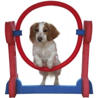 Rosewood Small Dog Agility Hoop - NQP