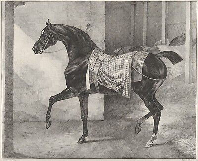 """Black Horse Tethered in a Stable 1822-Théodore Gericault,12x8""""(A4)Poster"""