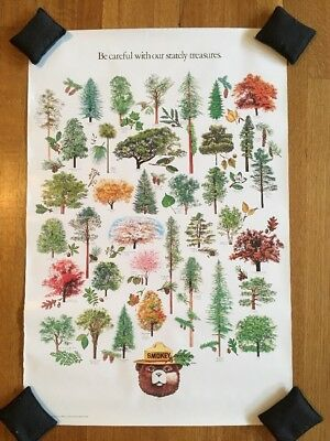 Smokey Bear Poster Stately Treasures State Tree Guide USFS Fire Prevention 20x30