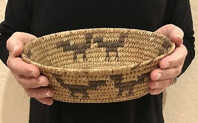 Native Indian Papago Basket Bowl Devil's Claw Animal Pictorial Designs 4 Birds!