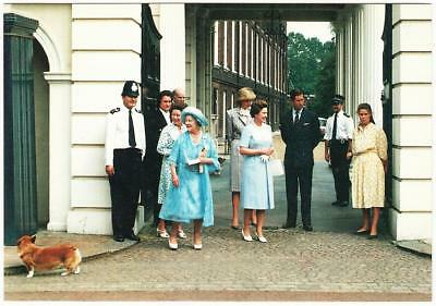 Queen Elizabeth II and Royal Family Candid with Corgi 1980s Postcard