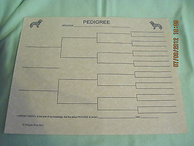 American Water Spaniel Blank Pedigree Sheets Pack 10 FREE SHIPPING dog canine