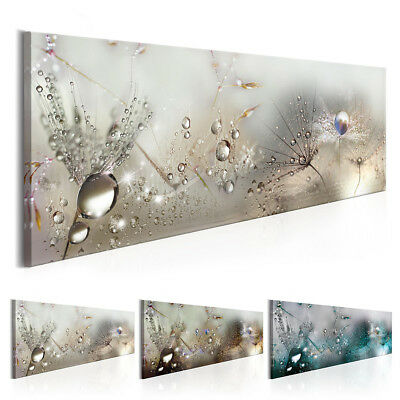 Home Decor Canvas Print Painting Wall Art Home Dew Beads dandelion no frame