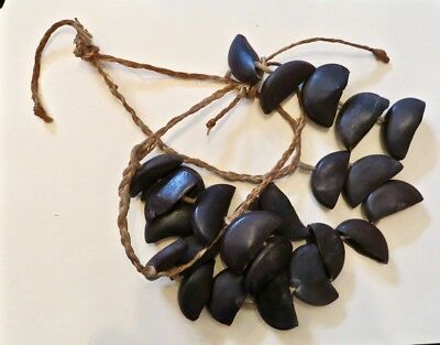 Highlands Seed Pod Dance Ankle Rattles Papua New Guinea