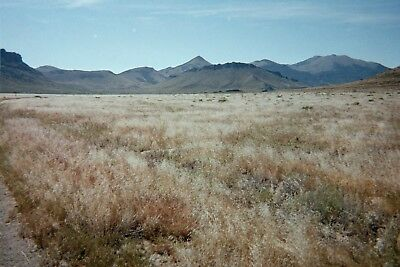 Spectacular 158 Acre Ranch in Clove Valley Elko, Nevada, United Sates