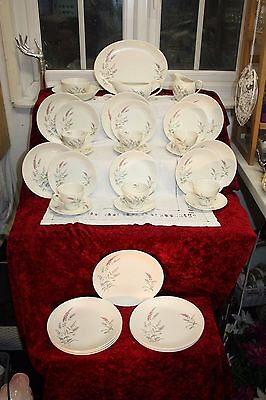 Vintage J & G Meakin Tea Set & Dinner service Romany Design 29 pieces