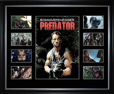 Predator Limited Edition Framed Memorabilia