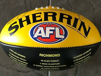 Hardwick Cotchin SIGNED Richmond Tigers 2017 AFL Premiers Sherrin Football PROOF