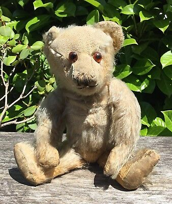 Old Vintage Antique Early 20th Century Long Nose Straw Kapok Filled Teddy Bear