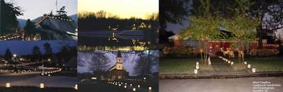 Simply Luminaries Outdoor Holiday/Wedding/Party/Church/Catering Lights Lot