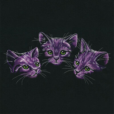 Moonlit Kitten Trio SWEATSHIRT EMBROIDERED Beautiful