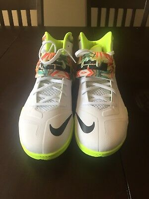 """separation shoes 70042 60cb9 Nike Zoom LeBron Soldier 7 """"King s Pride"""" sz 14"""